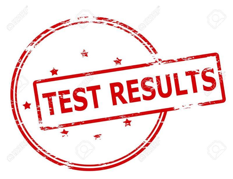 Gifted Testing Results