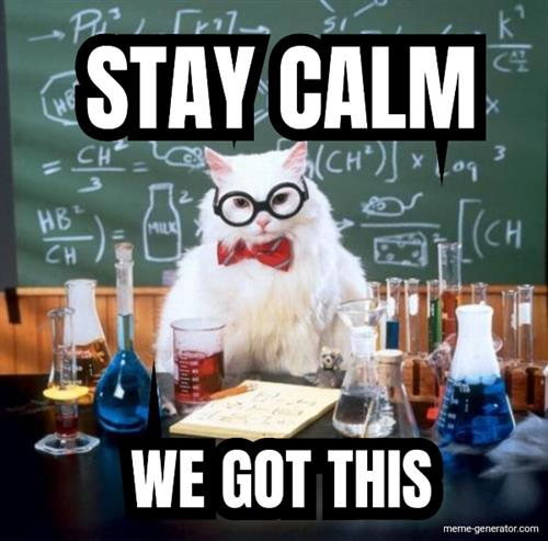 Stay calm cat