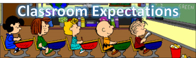 Image result for classroom expectations
