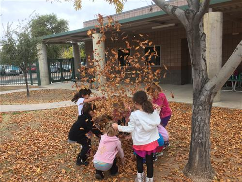 Kindergarten kids throwing leave in the air