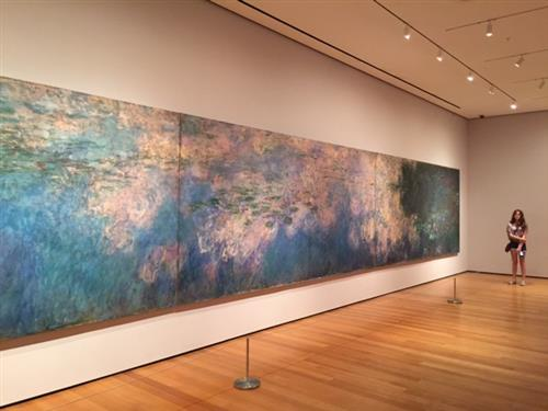 Monet's waterlily painting, photo I took while viewing it in New York.