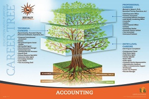 Accounting Career Tree