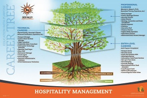 Hospitality Management Career Tree