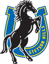 Stetson Hills School